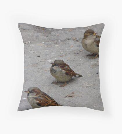 Three baby Throw Pillow