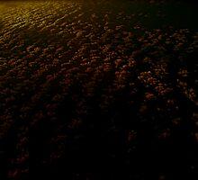Oceans night by diongillard