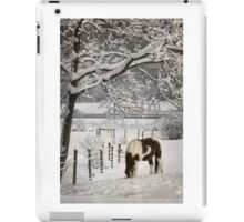 Paint in the Snow iPad Case/Skin