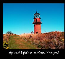 Aquinnah Light House by Roslyn Lunetta