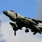 Harrier Jump Jet  by SWEEPER