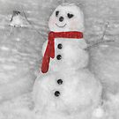 Holiday Snowman by Lori Deiter
