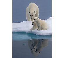Polar Reflections Photographic Print