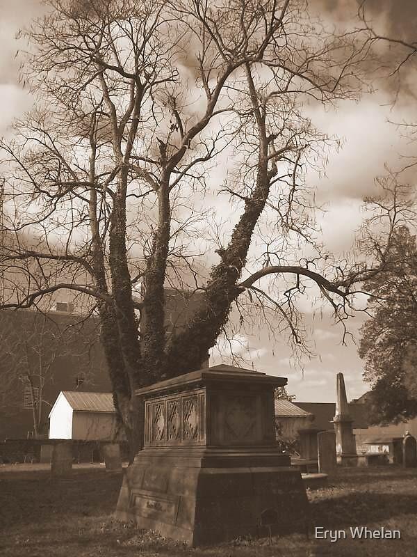 remembrance by Eryn Whelan