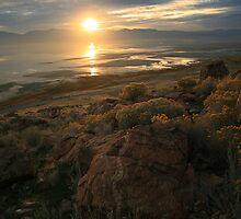 Island Sunrise by Gene Praag