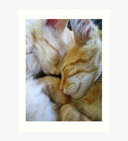 Snuggle Kittens Art Print