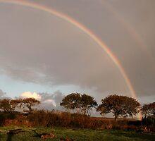 Rainbow by jimlad