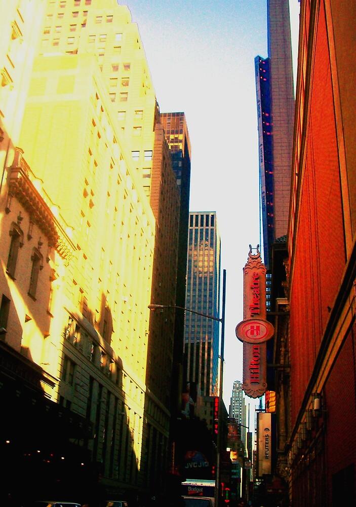 New York, New York by pinkangel014