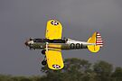 RYAN-PT20A at Shuttleworth  by SWEEPER