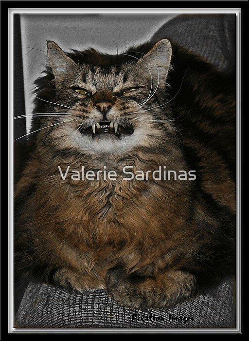 Tiger cat by Valerie Sardinas