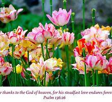 Love Endures Forever by debbienobile