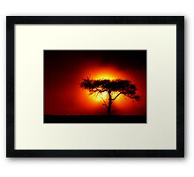 Sun Tree Framed Print