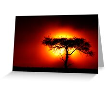 Sun Tree Greeting Card