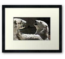 polar fight Framed Print