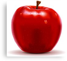 Red Apple Isolated on White Canvas Print