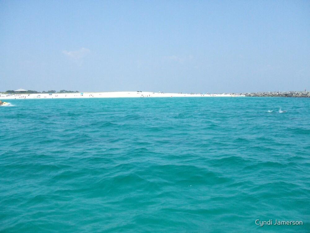 Shell Island Dolphin Fins by Cyndi Jamerson