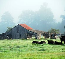The Old Barn by Patito49