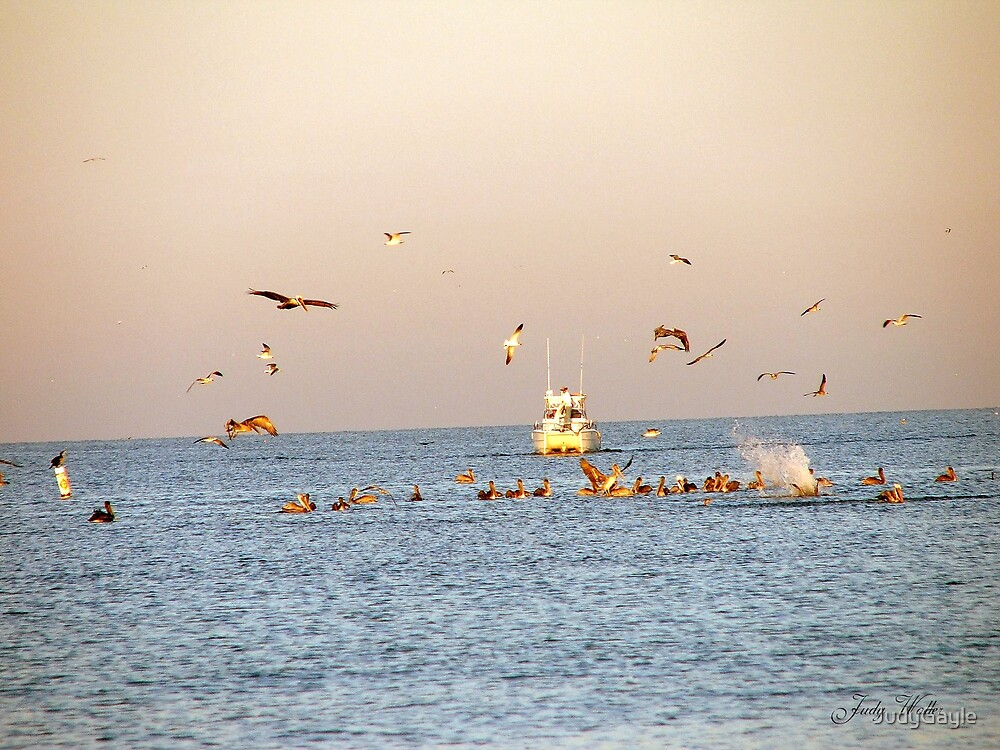 Pelicans in Flight by Judy Gayle Waller