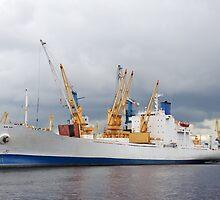 Ship and cranes by bashta