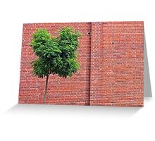 Red Bricks on a wall Greeting Card