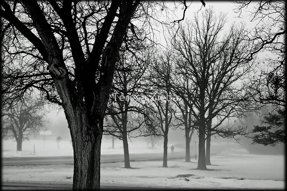 Foggy Impression by Teresa Zieba