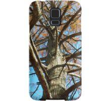 Up A Bare Tree Samsung Galaxy Case/Skin