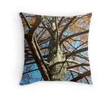 Up A Bare Tree Throw Pillow