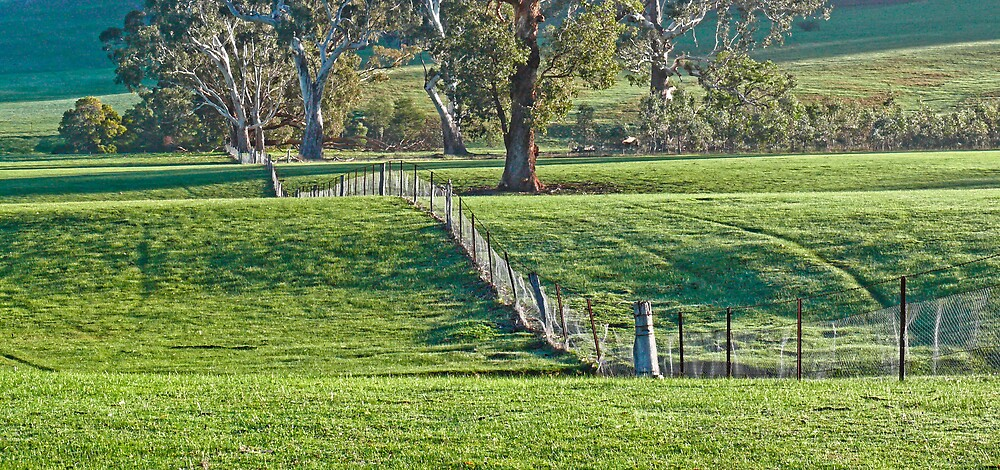 Rolling Fences by Samuel Gundry