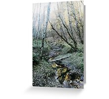 Tryon Creek Greeting Card