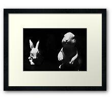 Myxi Framed Print