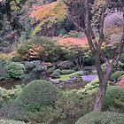 japanese garden by Bruce  Dickson