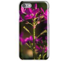Flower close-up 2 iPhone Case/Skin