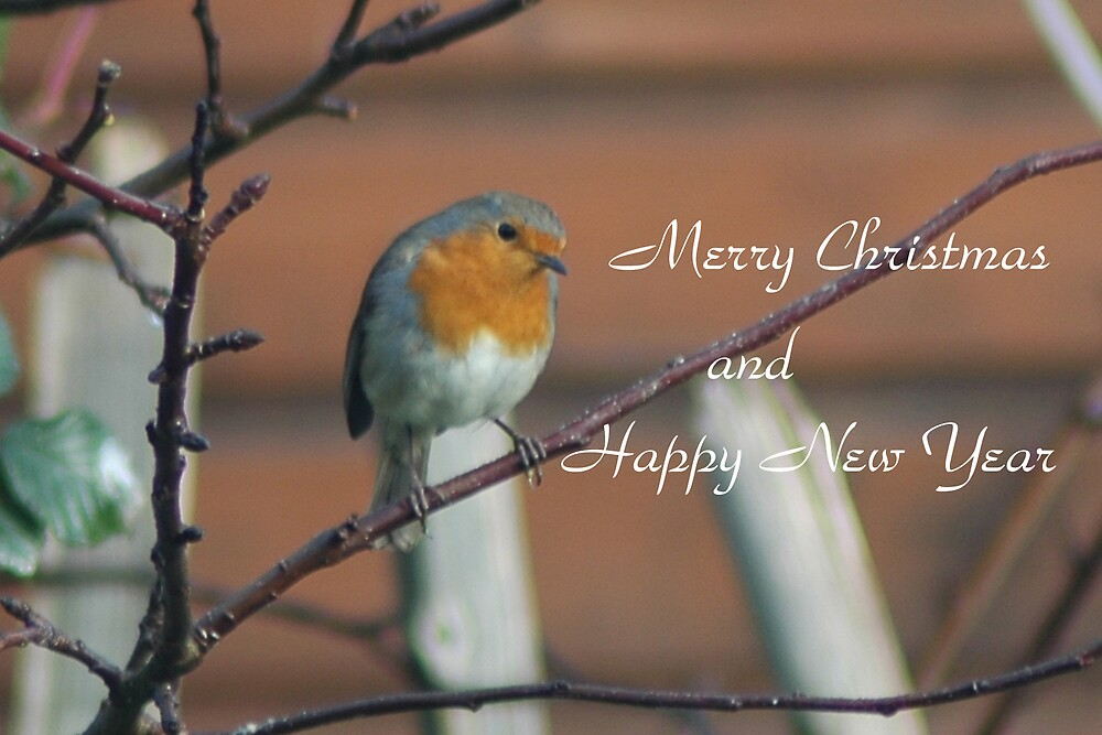 Merry Christmas by Catherine Brock