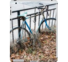 On the fence iPad Case/Skin