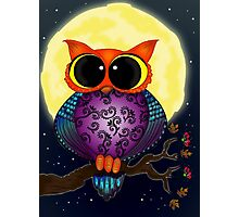 Owlmoon Photographic Print