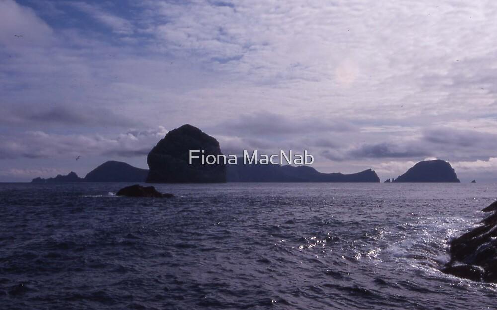 St Kilda by Fiona MacNab