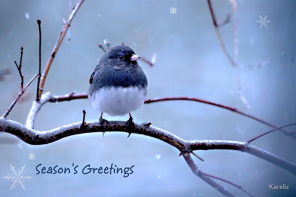 Season's Greetings by Kareliz