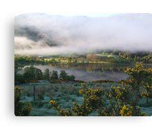 dawn mist  Canvas Print