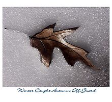 Winter Caught Autumn Off Guard Photographic Print
