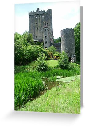 Blarney Castle by Margaret Zita Coughlan
