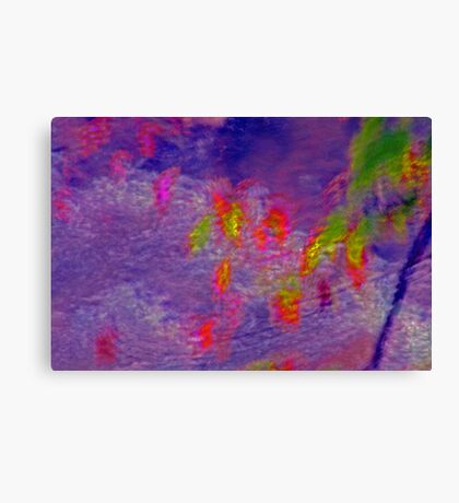 Dance Of The Water Sprites Canvas Print