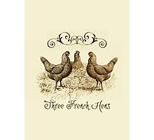 3 French Hens Photographic Print