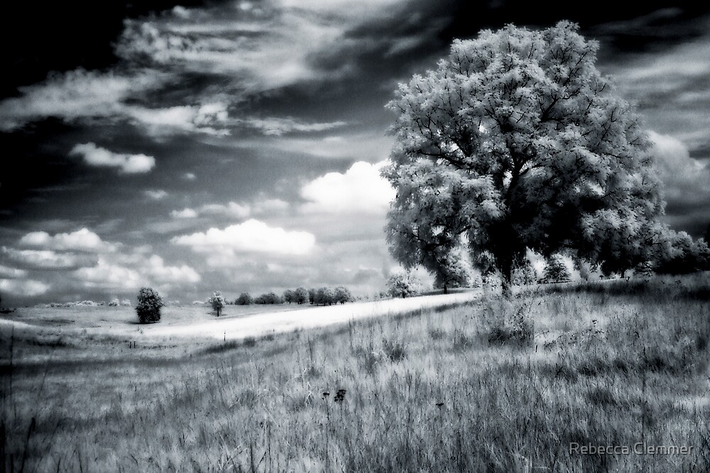 Rolling Hills by Rebecca Clemmer