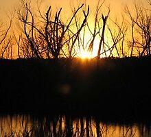 Fishing Sunset by rayrayshep