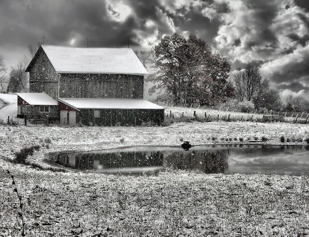 Winter Wonderland by scannermom