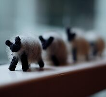 Baa, Baa, Black Sheep by Lucy Wardle