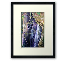 Falls at St Bernards Mt.Tamborine Framed Print