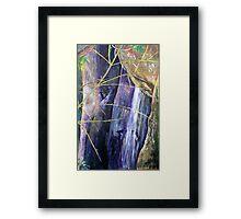 Falls at St Bernards Mt.Tamborine Framed Print