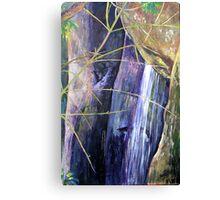 Falls at St Bernards Mt.Tamborine Canvas Print