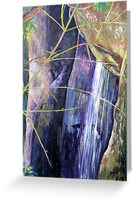 Falls at St Bernards Mt.Tamborine by Virginia McGowan